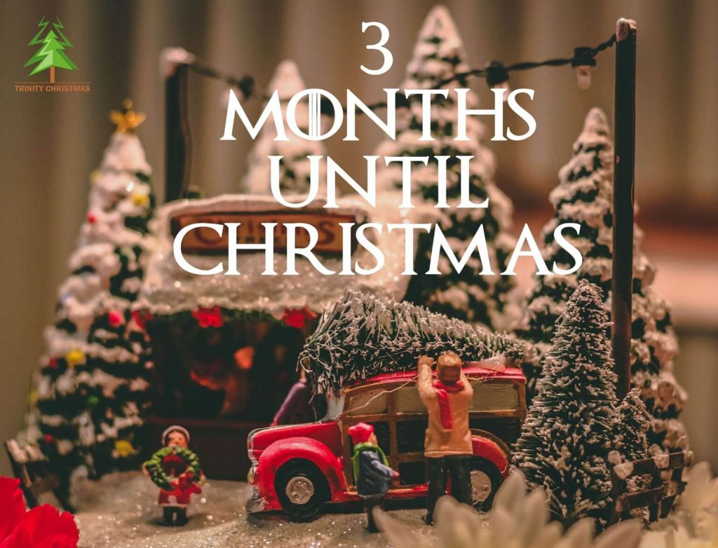months to christmas